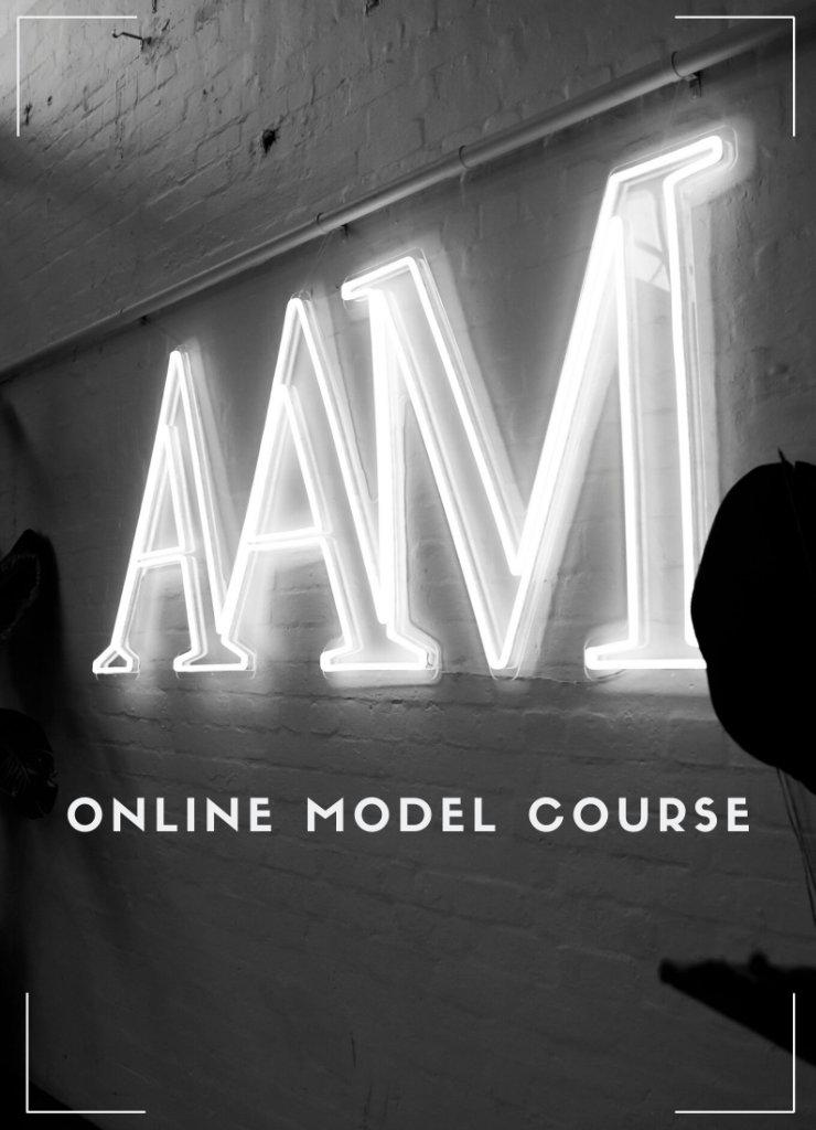 Online Model Course image